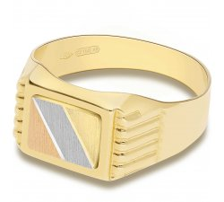 Man Ring in Yellow, White and Rose Gold GL100005