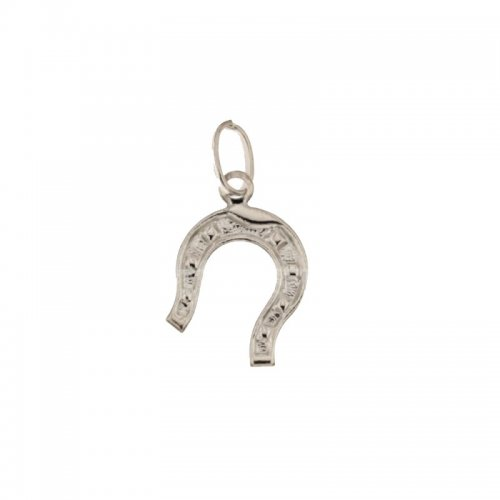 Horseshoe lucky charm 803321703381