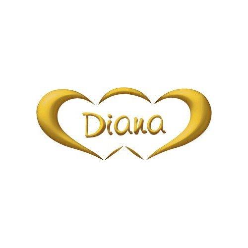 Fede Nuziale DIANA 3 grammi Fascia stretta Oro giallo Francesina Classica